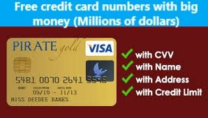 free credit card numbers with money